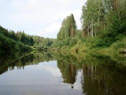 Буньковские просторы